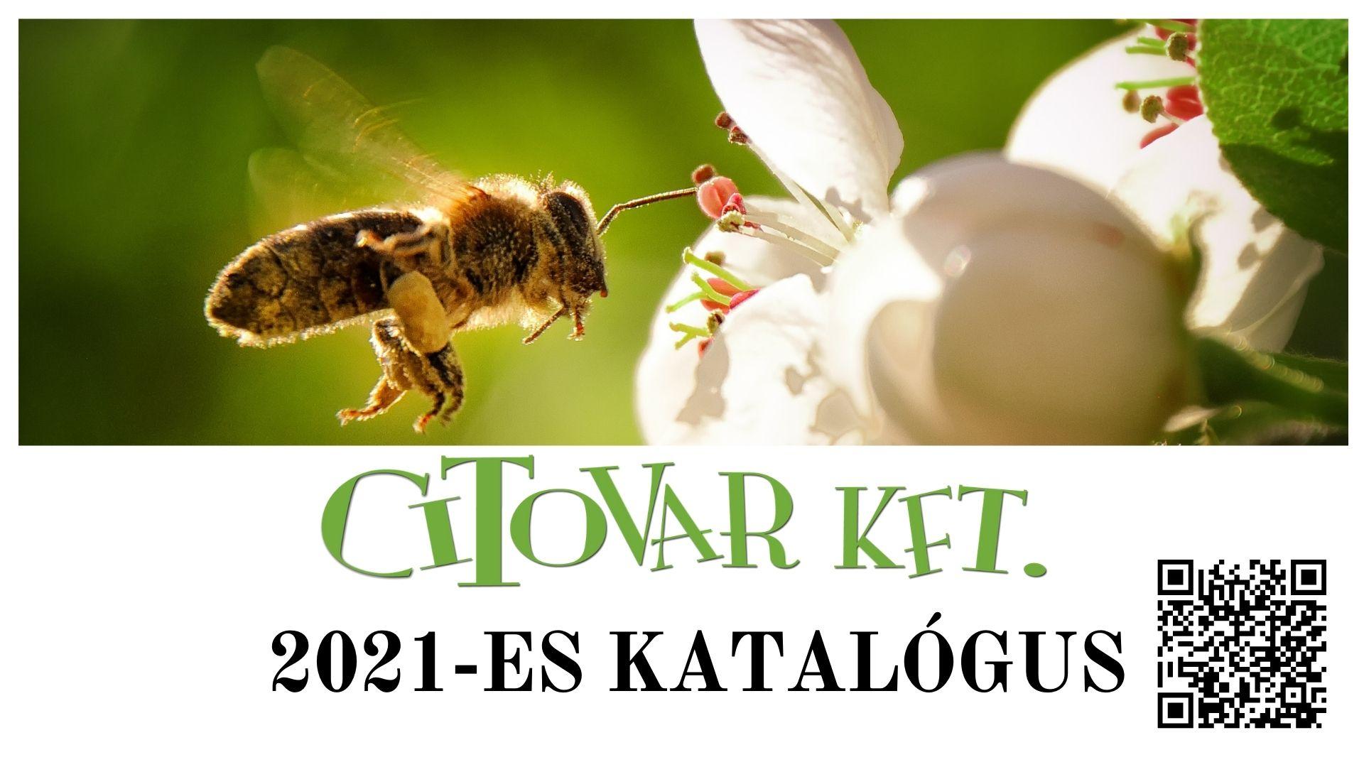 Citovar Katalógus 2021